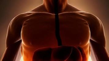 Crees que dieta para bajar de peso de manera efectiva Otras
